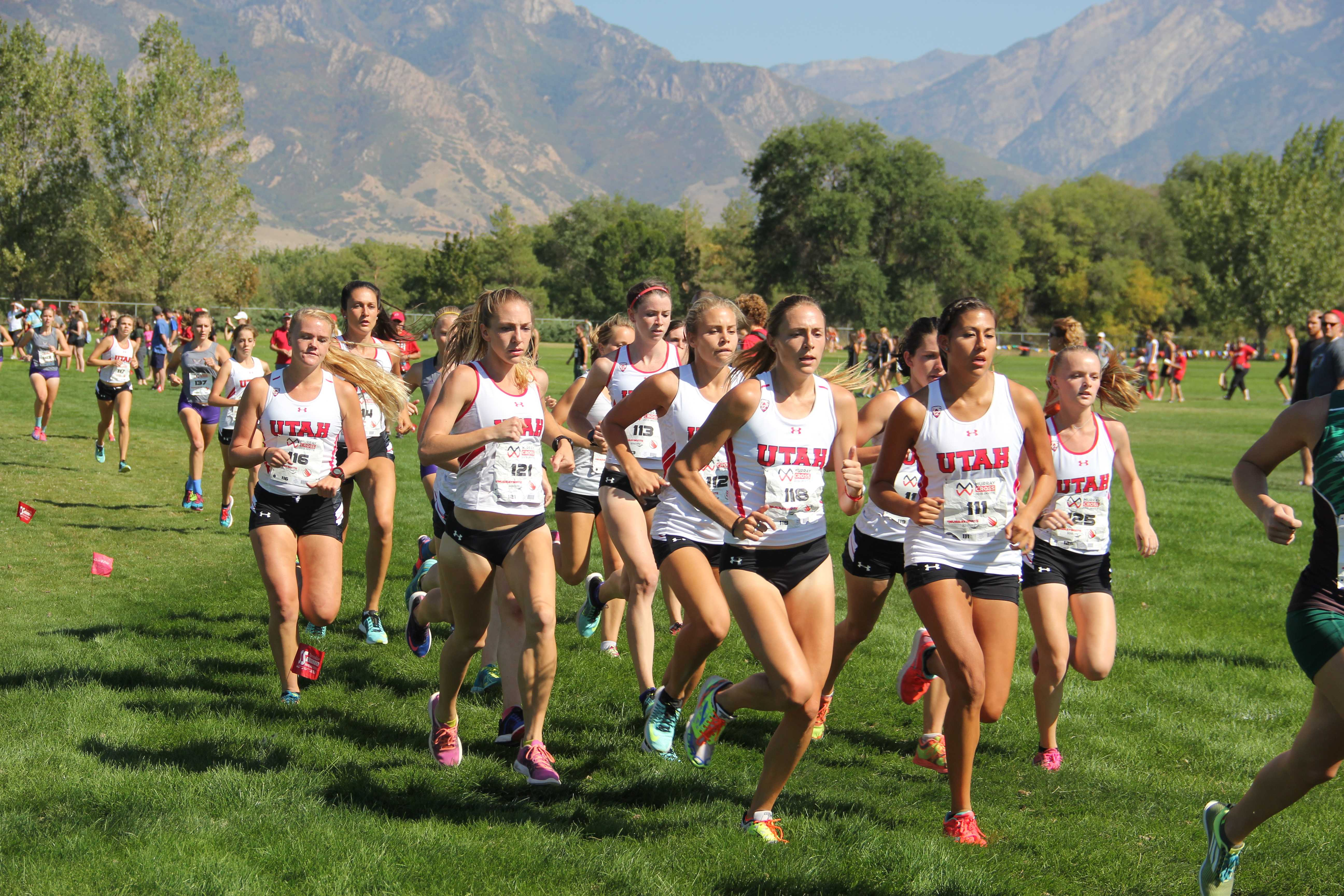Field announced for NCAA Cross Country Championships
