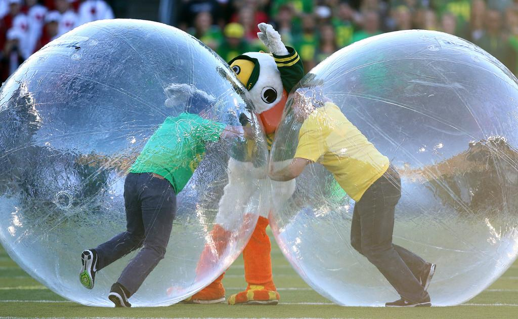 The Oregon mascot, Puddles, gets caught in between two contest participants during Pac-12 play against the Utah Utes at Autzen Stadium in Eugene, Ore., Saturday, Sept. 26, 2015. Chris Samuels, Daily Utah Chronicle.