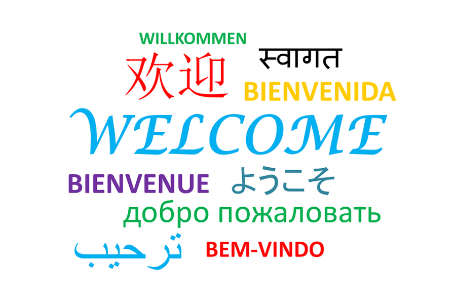 The Importance of a Second Language