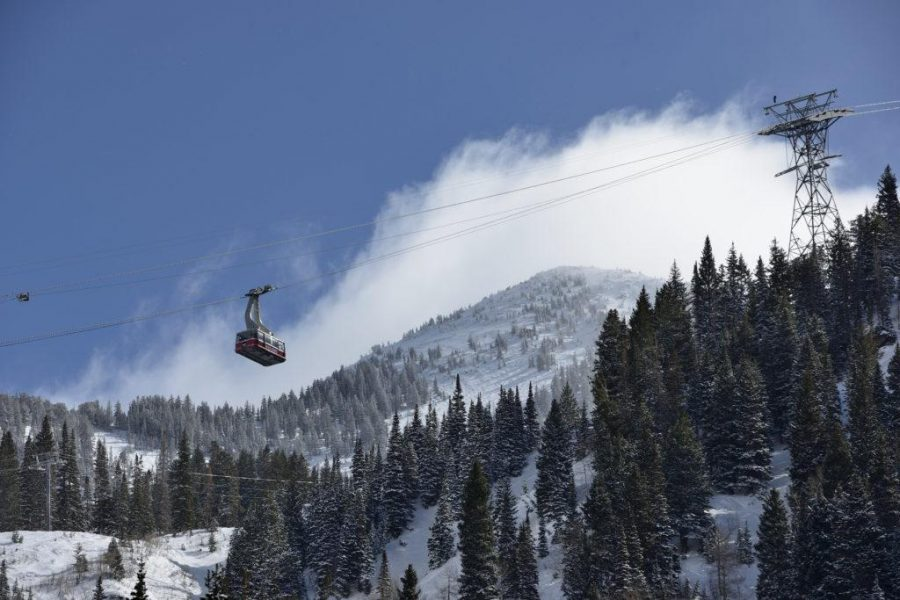 Which ski resort should you go to this season?