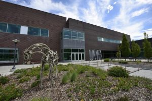 UMFA's History Proves Art and Science Belong Together