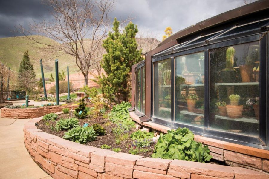 Art, Action, and Arbor Day at Red Butte Garden