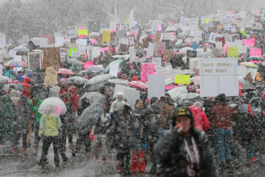 Womens March On The Capital 2