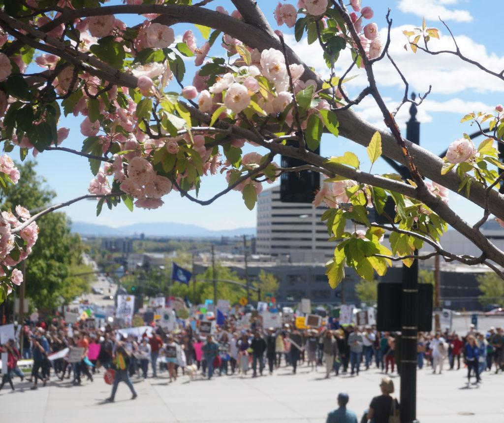 The Utah People's Climate March turns on South Temple towards the Governor's Mansion in Salt Lake City, Utah on Saturday, Apr. 29, 2017. (Rishi Deka, Daily Utah Chronicle)