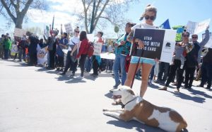 A woman holds a 'Utah Stands with Bears Ears' sign on South Temple near the Governor's Mansion in Salt Lake City, Utah on Saturday, Apr. 29, 2017. (Rishi Deka, Daily Utah Chronicle)