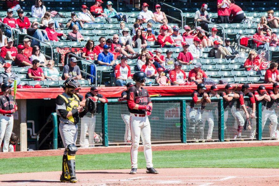 Baseball: Utes Holding On Despite Bumpy Road