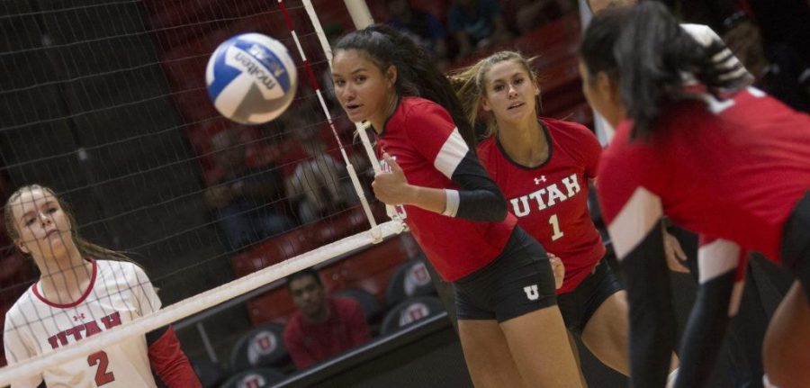 Shannon Scully (2), Phoebe Grace (19) and Dani Barton (1) look on while Adora Anae (14) hits the ball during the Utah Women's Volleyball Red vs. White Scrimmage at the U Hunstman Center in Salt Lake City, Utah on Saturday, Aug. 19, 2017. (Dr. Rishi Deka  | Daily Utah Chronicle)