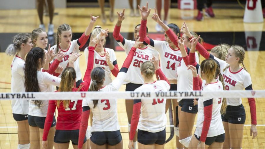 The University of Utah Volleyball team cheers after their loss to the Oregon Ducks in a set of matches at the Huntsman Center in Salt Lake City, UT on Friday, Sept. 29, 2017  (Photo by Kiffer Creveling | The Daily Utah Chronicle)