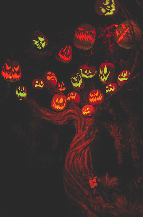 Halloween Haunted House Attractions