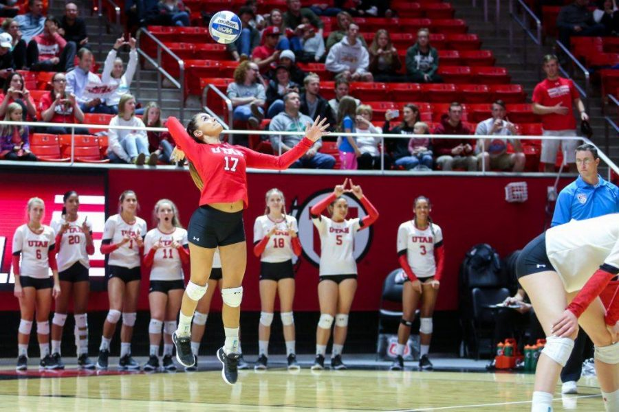 University+of+Utah+sophomore+defensive+specialist+Briana+Doehrmann+%2817%29+served+the+ball+in+an+NCAA+Volleyball+game+vs.+The+Arizona+Wildcats+in+Jon+M.+Huntsman+Center+in+Salt+Lake+City%2C+UT+on+Saturday%2C+Nov.+18%2C+2017.%0A%0A%28Photo+by+Curtis+Lin%2F+Daily+Utah+Chronicle%29
