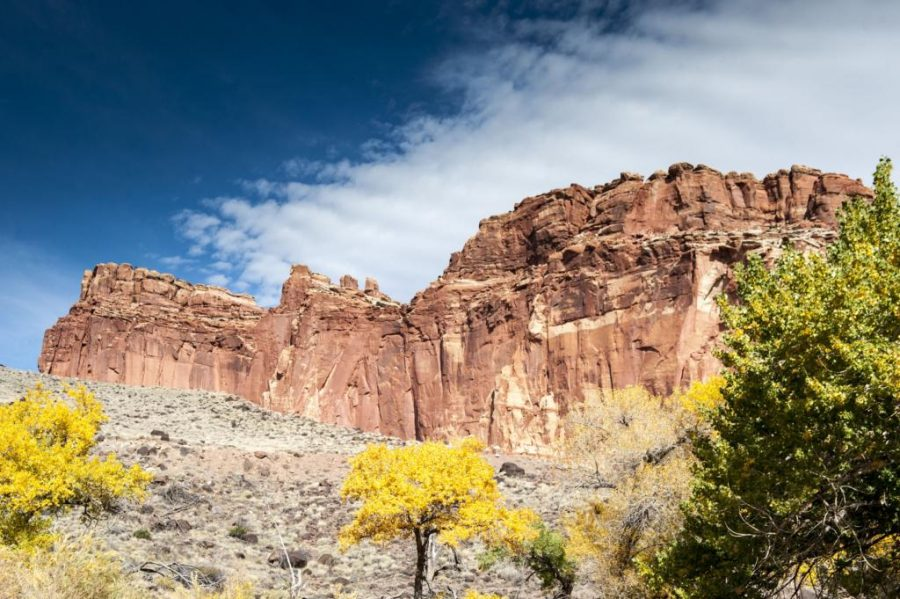 Barron%3A+Hike+Up+Canyons%2C+Not+Fees