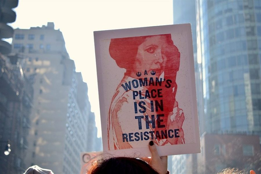 A sign from a Womens March