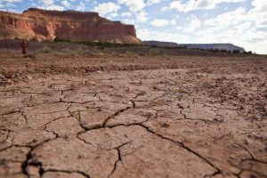Williams: The Possible Outcomes of Utah's Drought