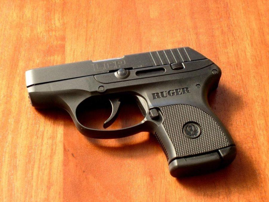 Barron: Gun Violence Research Is Pro-Human