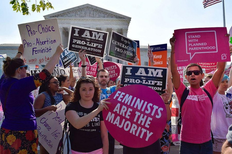 Sonnenberg: Wins and Losses for the Pro-Life Movement