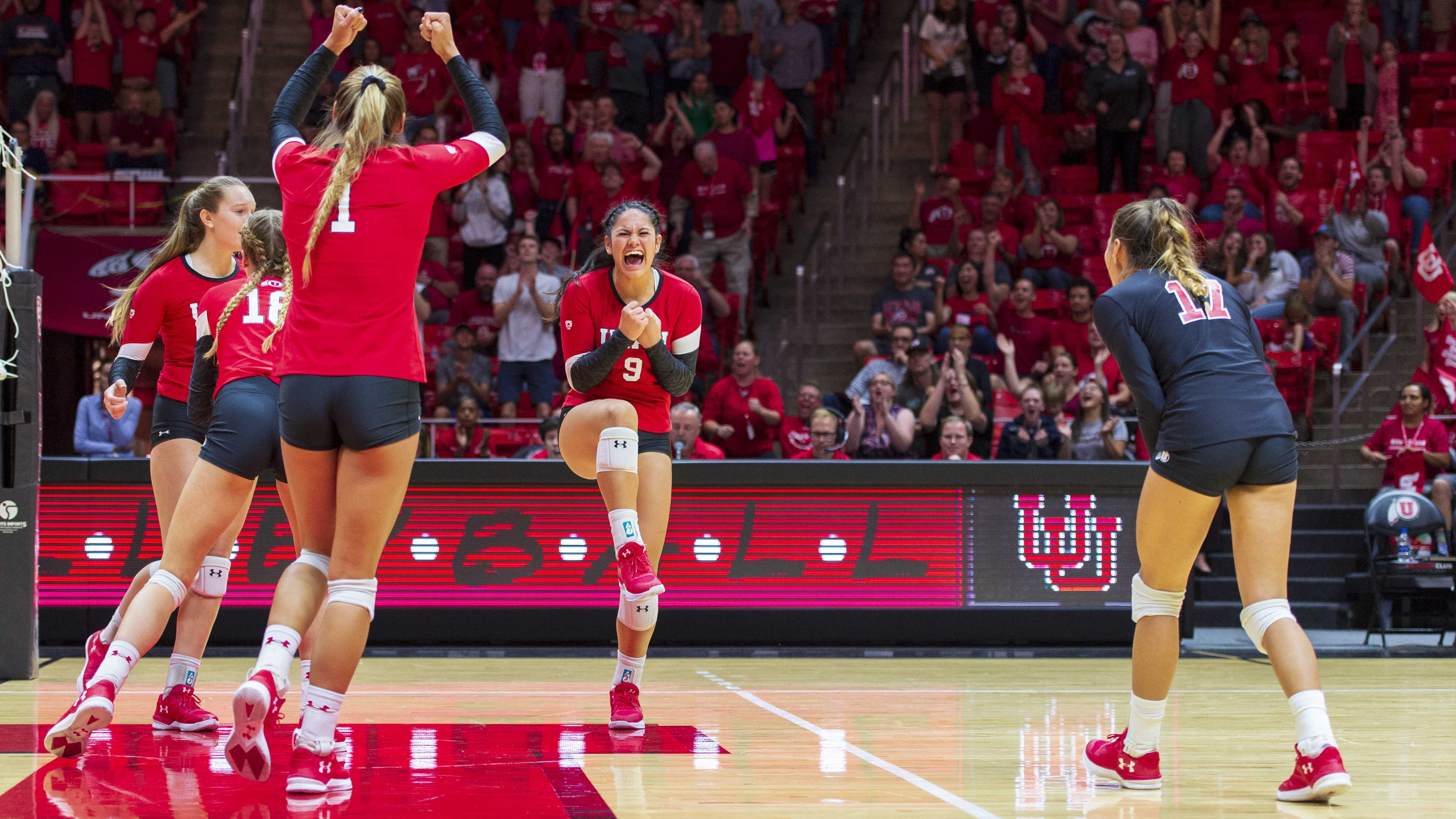 The University of Utah Utes celebrate after a point in an NCAA Volleyball match vs. the UCLA Bruins at the Jon M. Huntsman Center in Salt Lake City, Utah on Friday, Sept. 21, 2018. (Photo by Kiffer Creveling | The Daily Utah Chronicle)