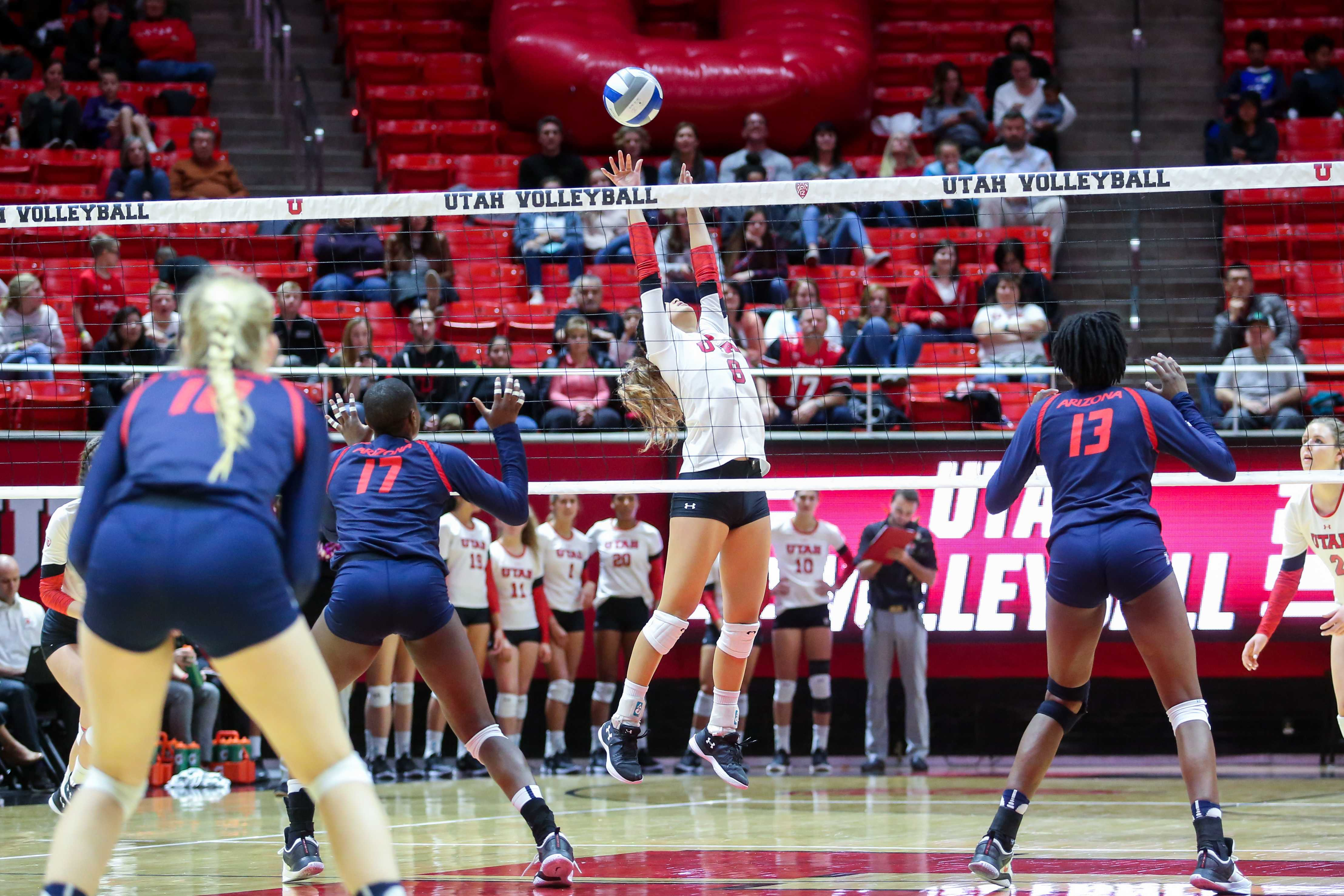 University of Utah sophomore setter Bailey Choy set the ball in an NCAA Volleyball game vs. The Arizona Wildcats in Jon M. Huntsman Center in Salt Lake City, UT on Saturday, Nov. 18, 2017.  (Photo by Curtis Lin/ Daily Utah Chronicle)