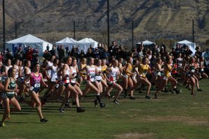 A Cross Country Season Review