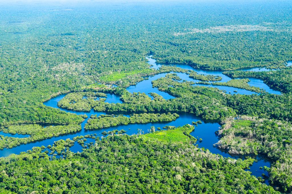 The Amazon Rainforest (Courtesy Flickr)