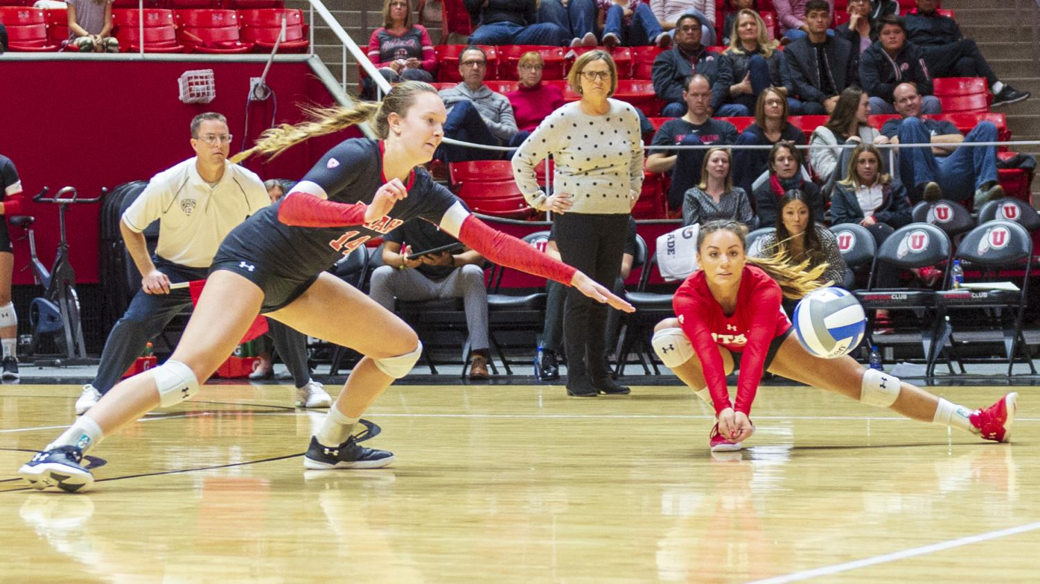 University of Utah junior libero/defensive specialist Brianna Doehrmann (17) attempts to dive for a dig in an NCAA Volleyball match vs. The Colorado Buffalos at the Jon M. Huntsman Center in Salt Lake City, Utah on Friday, Nov. 23, 2018. (Photo by Kiffer Creveling   The Daily Utah Chronicle)