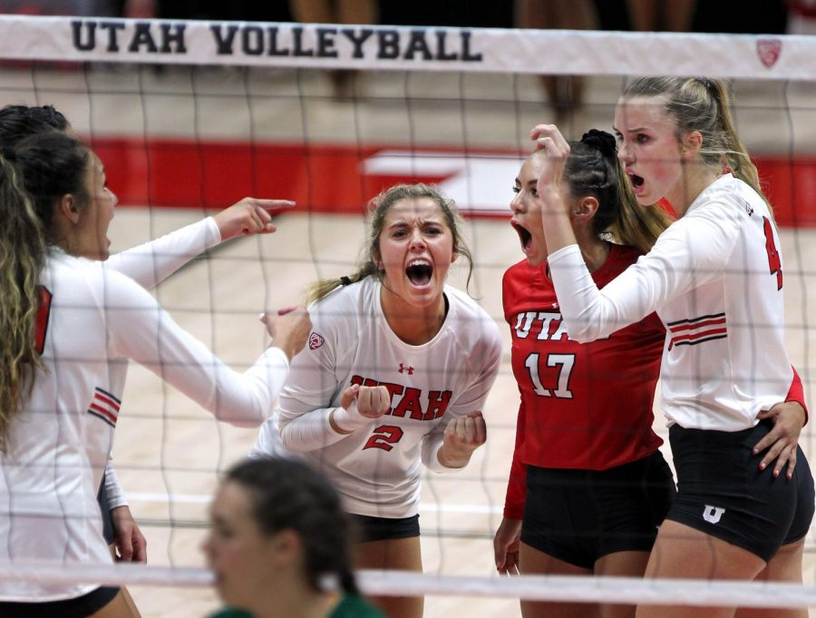 From Manager to Player: How Sarah Stephens Made It To the Volleyball Court
