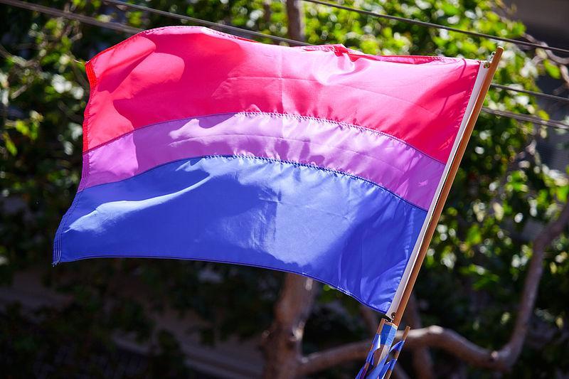 Bisexual Flag Emoji