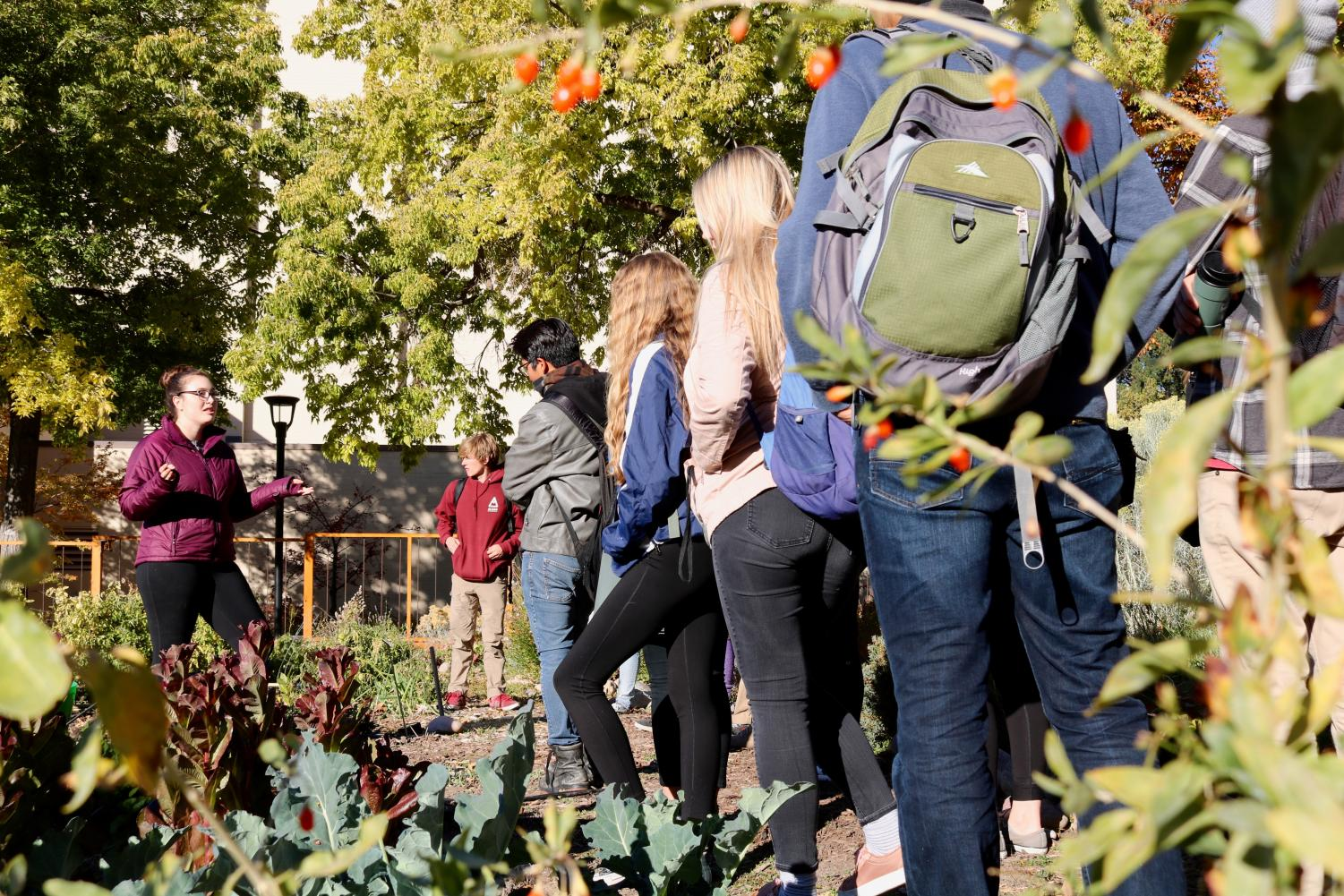 Students learn in one of the edible campus gardens. (Courtesy of Jessica Kemper)