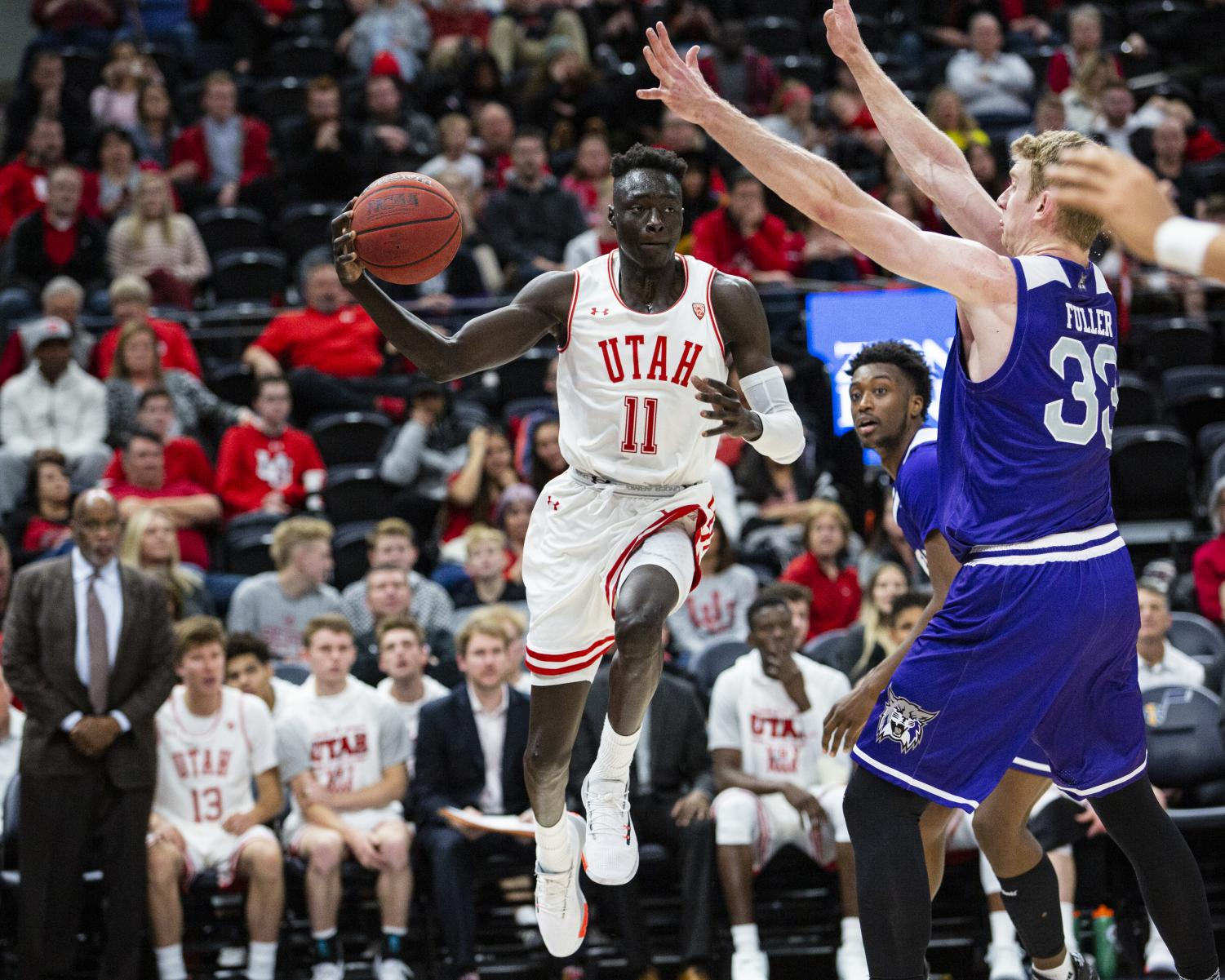 Sophomore Both Gach (11) gets a pass against Weber State University in the Beehive Classic on Dec. 14 at the Vivint Smart Home Arena. (Justin Prather | Daily Utah Chronicle)