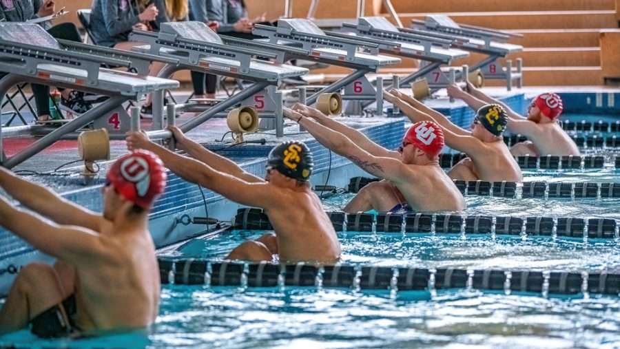University of Utah Utes Men's Swimming and Diving Team performs during a dual meet vs. University of Southern California at the Ute Natatoriam in Salt Lake City on Feb. 23, 2020. (Photo by Abu Asib | The Daily Utah Chronicle)