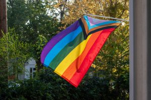 McGrath: Mike Lee, Stop Policing Gay Parents