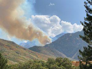 Fire Breaks out in Neff's Canyon