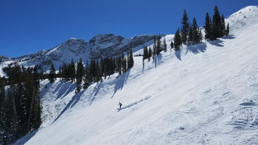 A+skier+works+their+way+down+the+face+of+Extrovert%2C+seen+from+the+Sugarloaf+lift+at+Alta+Ski+Resort.+