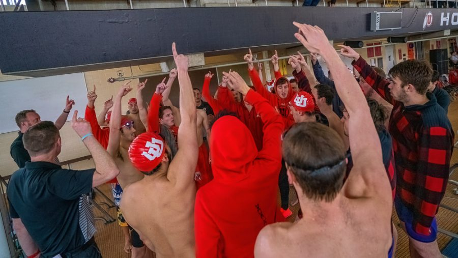University of Utah Utes Men's Swimming and Diving Team members cheer one another during a dual meet vs. University of Southern California at the Ute Natatoriam in Salt Lake City on Feb. 23, 2020. (Photo by Abu Asib | The Daily Utah Chronicle)