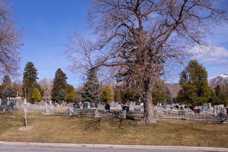 Salt Lake City Cemetery (Photo by Maya Fraser | The Daily Utah Chronicle)