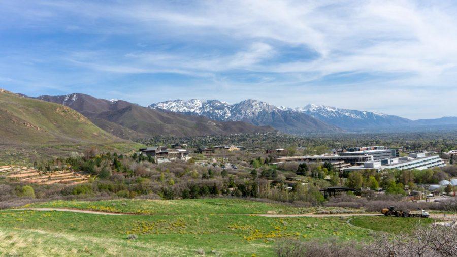 Local hiking trails near the University of Utah (Photo by Tom Denton   The Daily Utah Chronicle)