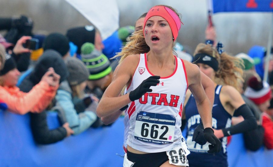 Cross Country: Murphy Places 8th at NCAA Championship, Earns All-American Honors